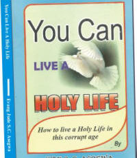 you-can-live-a-holy-life